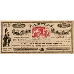 Capital Gold and Silver Mining Company Stock Certificate (91970)