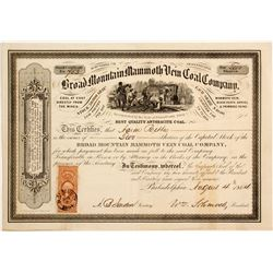 Broad Mountain Mammoth Vein Coal Company Stock  (81969)