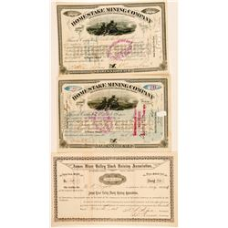 Three Dakota Territory Stock Certificates (Mining & Farm)  (100774)