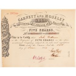 Garnett and Moseley Gold Mining Co. Stock  (101407)