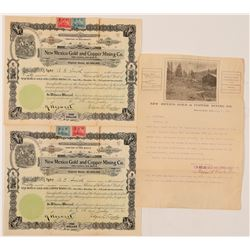 Mining Stock/ Territorial / New Mexico Gold & Copper Mining Co./  3 Items.  (102093)