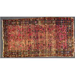 Rug (Wool, Oriental)  (84473)