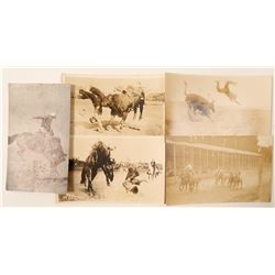 Cowboys and Broncs Postcards  (102361)