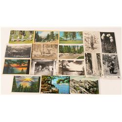 Lake Tahoe Region Postcards with 8 RPC's (16)  (90720)