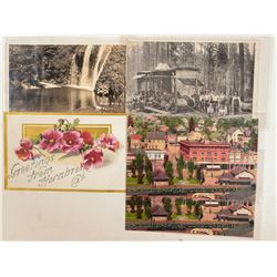 McCloud/Dunsmuir, CA Postcards  (103193)