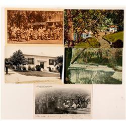 Napa/Sonoma, CA Postcards (5)  (101793)