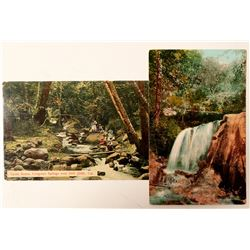 Congress Springs, CA Postcards  (90793)
