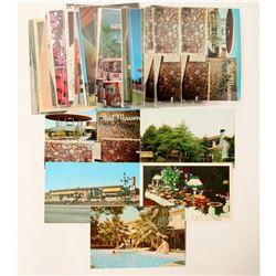 Sarasota/Palo Alto/Los Altos Postcards  (103181)