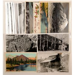 Shasta County, CA Area Postcards  (103207)