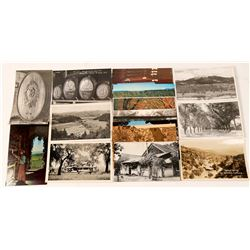 St. Helena Postcards with RPC's (25)  (101792)
