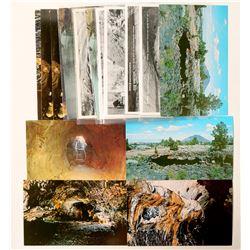 Volcanic National Parks Postcards  (103185)