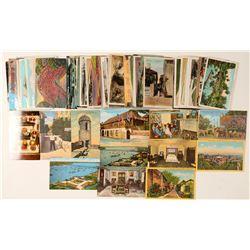 Florida Postcard Collection  (101698)
