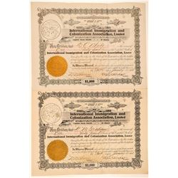 International Immigration & Colonization Association Stocks incl. Number 1 and 2  (101515)