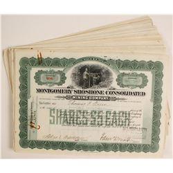 Montgomery Shoshone Con. Mining Stocks  (80818)