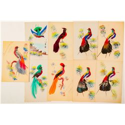 Bird Postcards with Real Feathers  (102674)