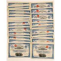 Alaska United Gold Mining Company Blue Stock Collection  (101440)