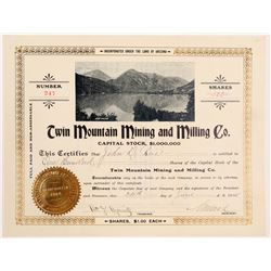 Twin Mountain Mining and Milling Company Stock  (103566)