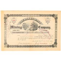 Alleghany Mining Company Stock Certificate  (91571)
