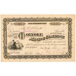 Holyoke Mining Company Stock Certificate  (101575)