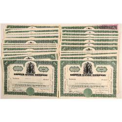 Copper Range Company Stock Collection  (102223)