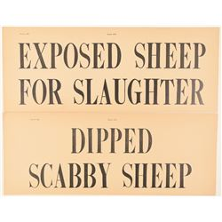 Scabby and Exposed Sheep  (99504)