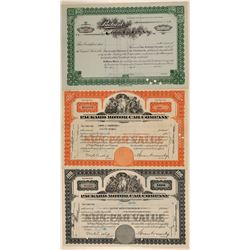 Packard Motor Car Company Stock Certificates  (103424)