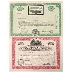 Two Raceway Stock Certificates  (91643)