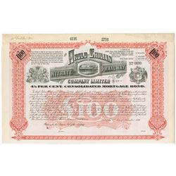 Anglo-Chilean Nitrate Railway Co. Ltd., 1896 Specimen Bond