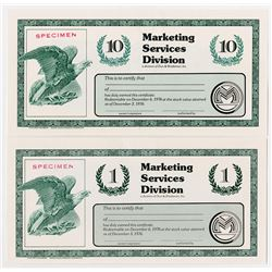 Marketing Services Division of Dun & Bradstreet, Inc. 1976 Specimen Certificate Pair.