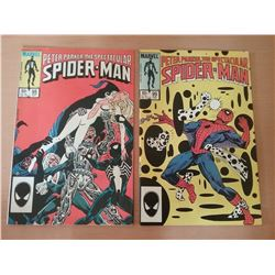Two - Peter Parker, The Spectacular Spider-Man Comics