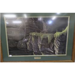 "Framed limited edition print titled ""Curiosity II"" double hand signed by artist Rod Tribriger 338/20"