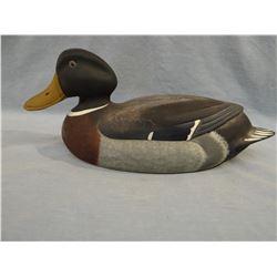 Delaware Mallard, North American Duck Collection