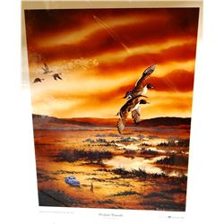Joseph Ziolkowski, Dodgin' Pintails, Montana DU Artist of the Year 2006, 16 w x 20h, signed and numb
