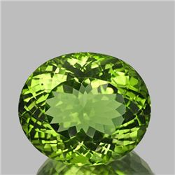 Natural AAA Green Apatite 3.26 Ct (Flawless-VVS1)
