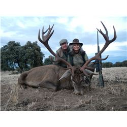 Trophy Red Deer or Fallow Deer or Mouflon hunt in Spain for one Hunter and one Observer