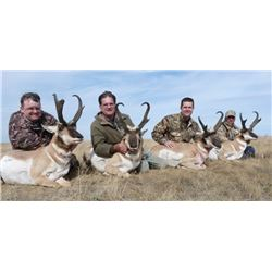 Alberta Trophy Pronghorn Hunt