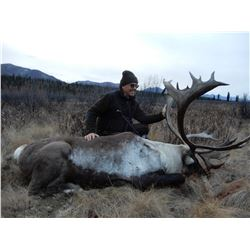 Yukon Mountain Caribou Hunt