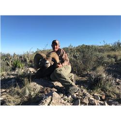 Mexican Desert Sheep Hunt