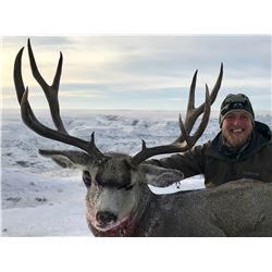 Alberta Mule Deer Hunt