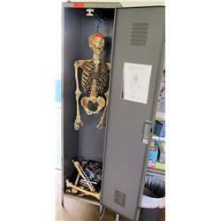 Model Human Skeleton and Metal Locker (RM-221)