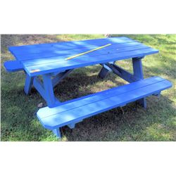 Blue Picnic Table (BK of AUDITORIUM)