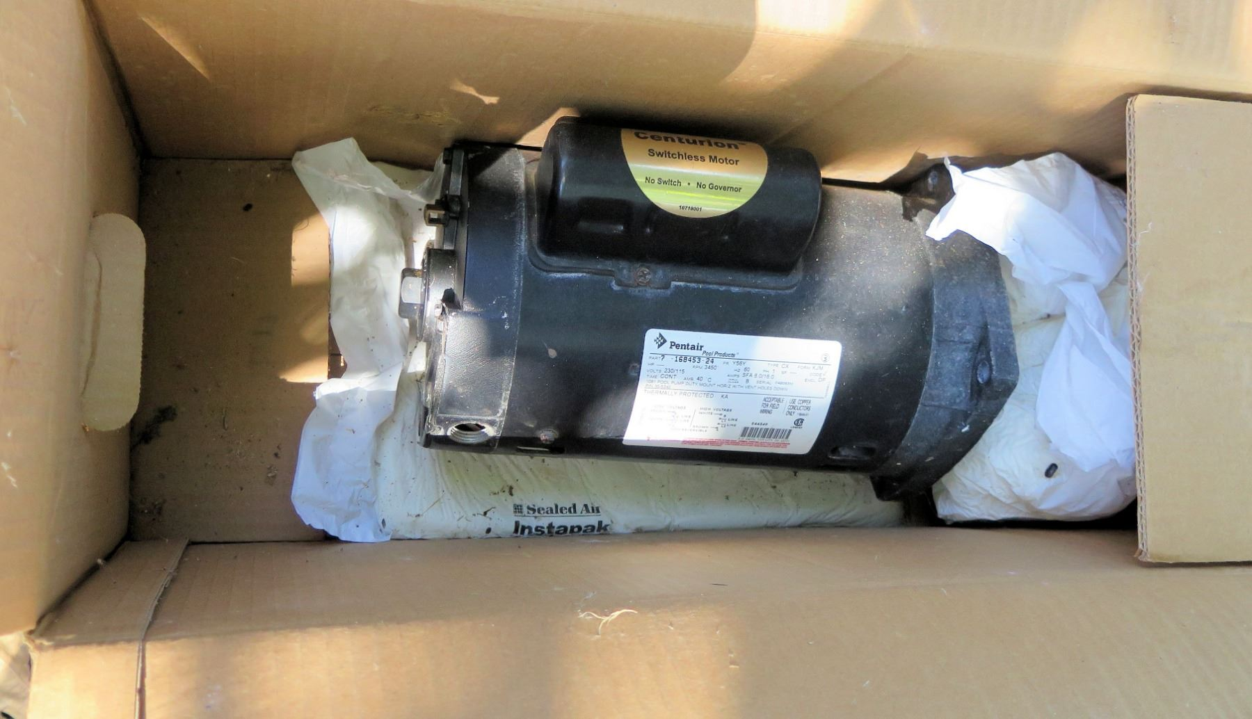 Pentair Centurion Switchless Motor (ANDY'S OFC) - Oahu Auctions