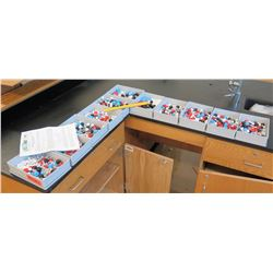 Flinn Molecule Model Building Kit (RM-121)