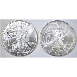 2004 & 2009 SILVER EAGLES