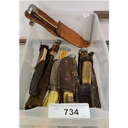 Lot Of 10 Vintage Bone Handle Knives