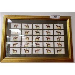 Framed Vintage Cigarrette Cards Of Rare Horses