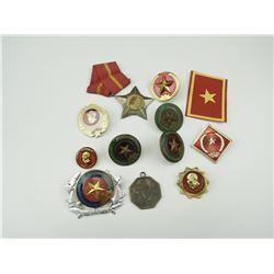 ASSORTED VIETNAM BADGES PINS & MEDAL