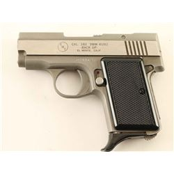 AMT Back Up .380 ACP SN: D04412