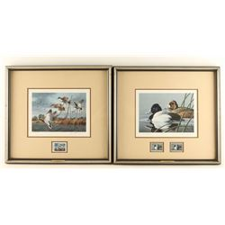 Two Limited Edition Waterfowl Prints with Stamps