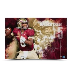 "Jameis Winston Signed FSU Seminoles ""College Sensation"" 16x24 Photo LE of 25 (UDA COA)"